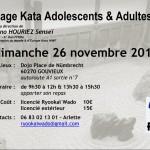 Affiche stage kata 26 novembre 2017